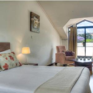Attic Deluxe 1-Bedroom  Apartment
