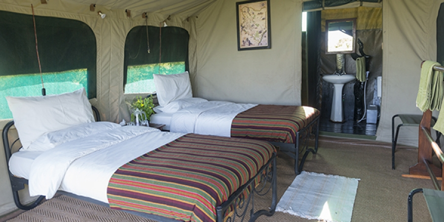 Classic Tent - Hippo Camp